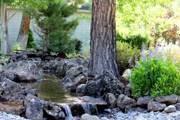 Water Features: Ponds, Fountains, Streams